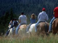 Equutrails Wilderness Adventures - Reiturlaub nahe Vancouver in Kanada!