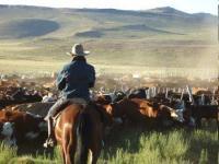 Estancia Ranquilco - Reiturlaub in El Huecu, Patagonien, Argentinien! Reitferien in den Anden!