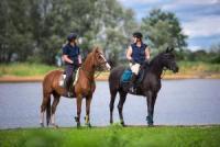 Reiturlaub für Erwachsene in Wietzetze an der Elbe