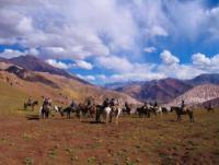Pioneros - Reiturlaub in Argentinien und Chile (Anden, Pampas, Patagonia)