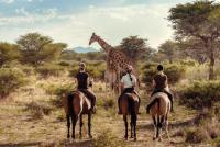 Reiten auf Kambaku in Namibia!