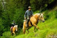 Wanderreiten auf dem Bacherhof im Pfitschtal-Südtirol