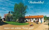 Reiterferien für Kinder sowie Familien auf dem Heidwaldhof im Dreiländereck Saar-Frankr-Lux