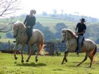 Fazenda Laranjal Guest Ranch und Reiturlaub - Reitferien westlich von Sao Paulo in Brasilien!