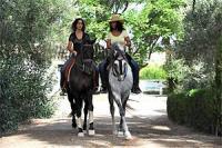 Reitferien bei Raphael+Kenzie Dysli  Andalusien, Westernreiten, Doma Vaquera + Natural Horsemanship