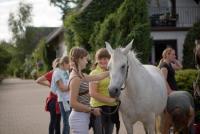 GESTÜT PFAUENHOF, Reiterferien für Mädchen, Ferienwohnungen in der Vulkaneifel