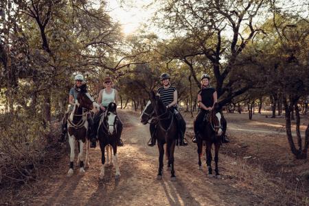 Princess Trails in Udaipur/Rajasthan / Alle Regionen
