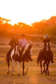 Entspanntes Reiten auf gut-ausgebildeten Pferden