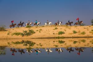 Ritt durch die Halbwüste nach Pushkar