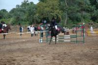 Princess Horse Riding - Reiturlaub zwischen Bangalore und Mysore in Indien!