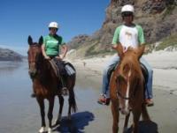 Hare Hill Horse Treks - Reitferien für Jedermann - Reiturlaub in Dunedin, Neuseeland!