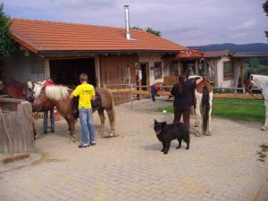 Ferienhaus mit Hund und Pferd im Bayerischen Wald