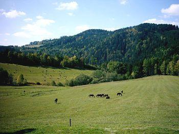 Green Valley Ranch in Rozmberk an der Moldau / Alle Regionen