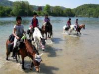 Reiterferien in Öhningen am Bodensee - Reitunterricht, Pferdeausbildung, Beritt, Pensionspferde