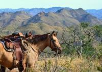 Rancho Los Baños Guest Ranch - Reiturlaub in Sonora, Mexiko, südöstlich von Arizona!