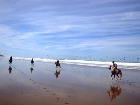 Wanderreiten in Marokko in Essaouira, Diabat / Alle Regionen