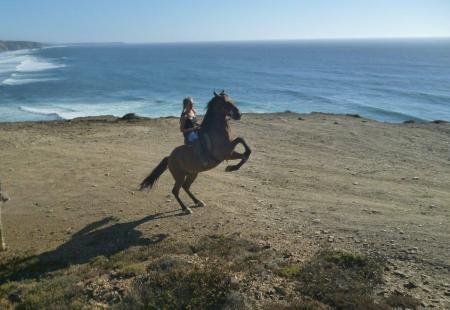 Adventure Riding in Aljezur/ Vale da Telha / Algarve