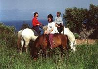 Reiten in Griechenland - PERIPETIA - Reiturlaub in Chrani, südlich von Kalamata auf dem Peloponnes!