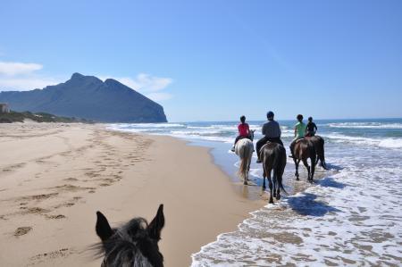 Sea Horse Club ASD in Baia d'Argento / Sabaudia (LT) / Latium