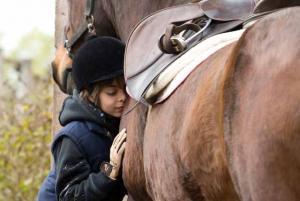Die Pferde sind zutraulich und für Kinder geeignet