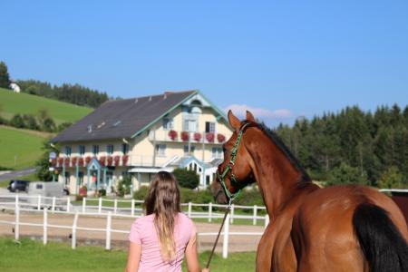 Das Leitner - Home&Horse in Sankt Jakob im Walde / Steiermark