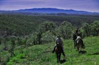 Wanderreiten / Leben mit Pferden im Herzen der Natur oder der ganz individuelle Trail in Portugal!