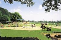 Reiterferien für Kinder von 6 bis 15 Jahren auf dem Kinderferienparadies Ponyhof Hagedorn