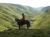 Reitwochenenden und Reitferien in den Brecon Beacons Mountains, Wales, Großbritannien!