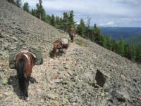 Wanderreiten in der Mongolei mit Stone Horse Expeditions & Travel