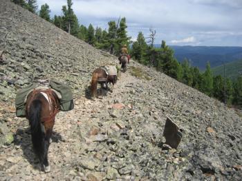 Stone Horse Expeditions in Darkhid valley, ca. 1 Autostunde von Ulaanbaatar / alle Regionen