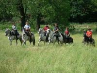 Wanderreiten auf Andalusischen Pferden im Thüringer Vogtland - Reiturlaub in Thüringen!