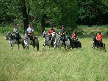 Pferderanch Andalusia in Wiebelsdorf / Thüringen