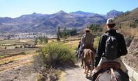 Reiten in Peru: Reiturlaub mit peruanischen Paso-Pferden und Inkakultur!
