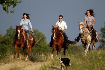 El Bronco Western Ranch in Izsak / Südliche Tiefebene-Puszta