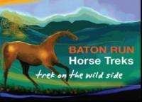 Wanderreiten in Neuseeland - Baton Run Horse Treks im Norden der Südinsel von Neuseeland