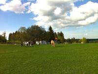 Les Frisons du Chateau Maison Bois - Urlaub mit dem eigenen Pferd in den Ardennen, Belgien!