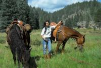 New Mexico Horse Adventures - Reitabenteuer - Reiturlaub in Corrales, New Mexico!