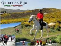 Quinta do Fijó - Reiturlaub in Arcos de Valdevez im Norden Portugals!