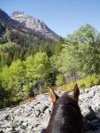 Storm Creek Outfitters - Reiten in der Wildnis von Idaho
