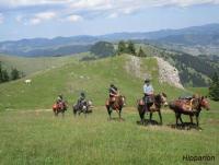 Wanderritte und Pferdetouren in Siebenbürgen mit Packpferden im Szeklerland-Reiturlaub in Rumänien!