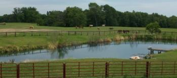 Trail M Boarding & Guest farm in Wilmington / Ohio