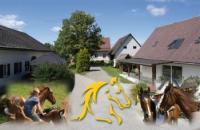 Wanderreiten in der Steiermark und Slowenien am Wohlfühl- und Westernreithof Siebernegg