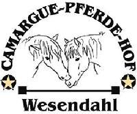 Natürliches und pferdefreundliches Reiten auf dem Camargue-Pferde-Hof in Wesendahl !