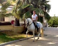 Arte Ecuestre - Reiturlaub auf Lusitanogestüt in Andalusien an der Costa del Sol in Spanien!