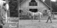 Painted Blessing Ranch-Natural Horsemanship besseres Verständnis zw. Pferd+Reiter in New Hampshire