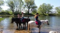 Reit- & Familienurlaub auf idyllischem Gutshof am ELBSCHLOSS KEHNERT in See- und Elbnähe