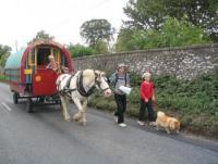 Reiturlaub in Irland am Fuße der Slieve-Bloom-Mountains im County Laois, dem Zentrum Irlands!