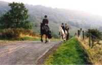 Boltby Riding Centre - Reiten für Jedermann durch den North York Moorland Nationalpark, England!