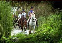 Reiturlaub - Reiterferien und Dressurtraining im Herzen von Andalusien in Spanien