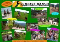 Sunrise Ranch - Erleben Sie die Schönheit der Natur von Costa Rica auf dem Rücken unserer Pferde!
